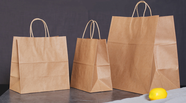 THE TAKE AWAY BROWN PAPER LUNCH BAGS CARRIER TAKE OUT